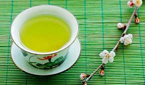 zelenyi-chai-dlya-zdorovya